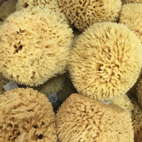 wool-sponges