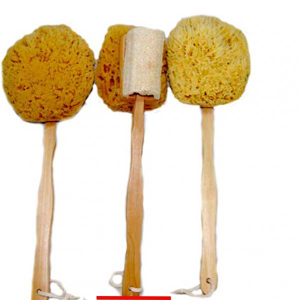 wool-sponge-and-loofa-on-a-stick