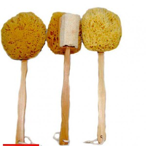 wool-sponge-on-a-stick