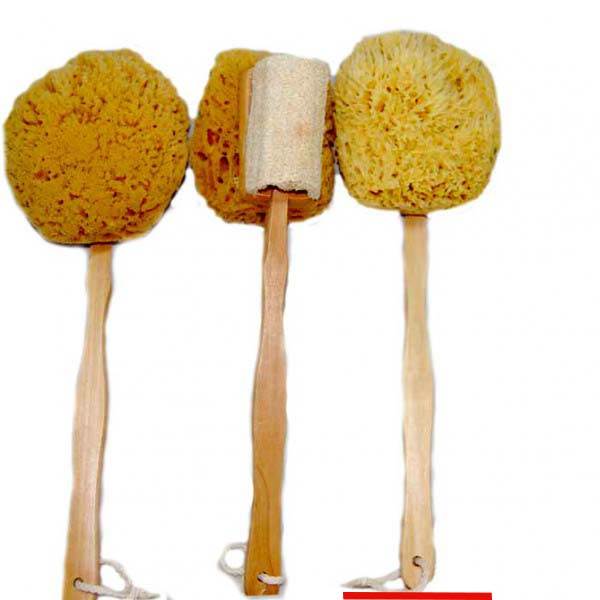 yellow-sponge-on-a-stick